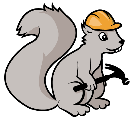 building-squirrel-new
